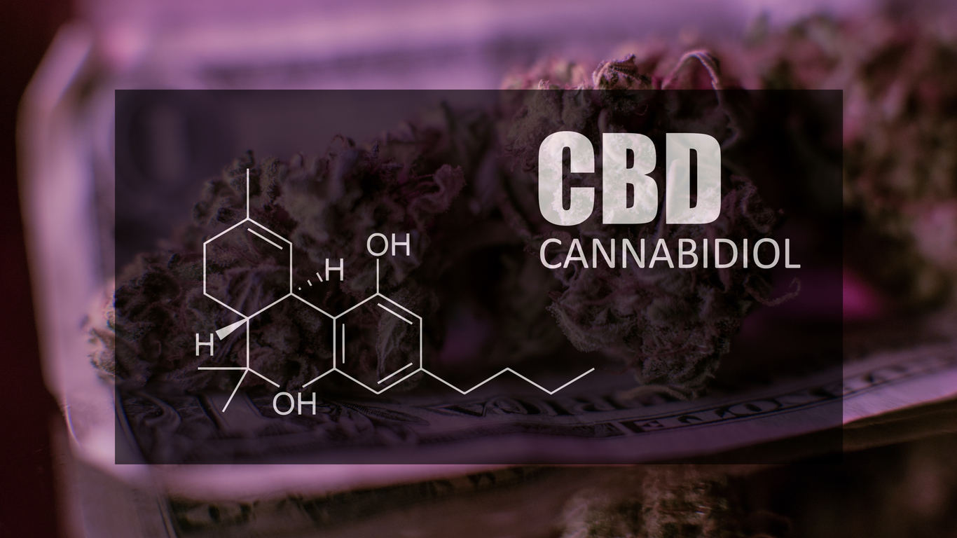 How to Start CBD Oil Business