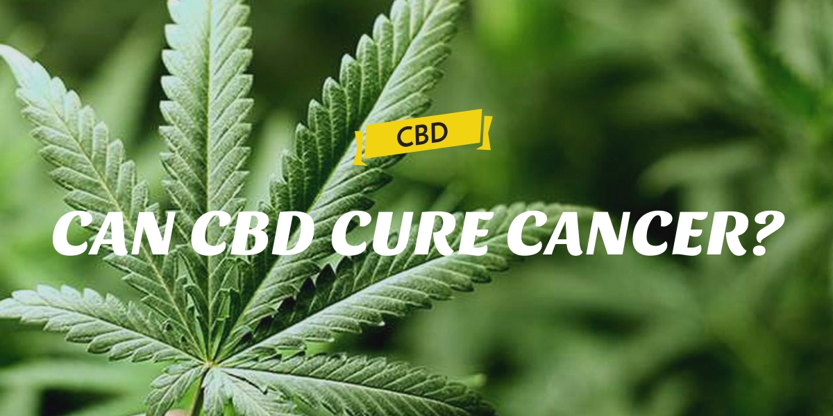 CAN CBD CURE CANCER?