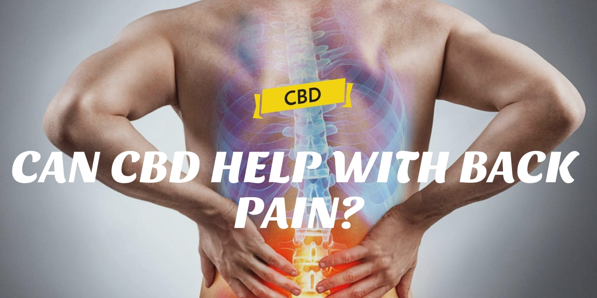 CAN CBD HELP WITH BACK PAIN?