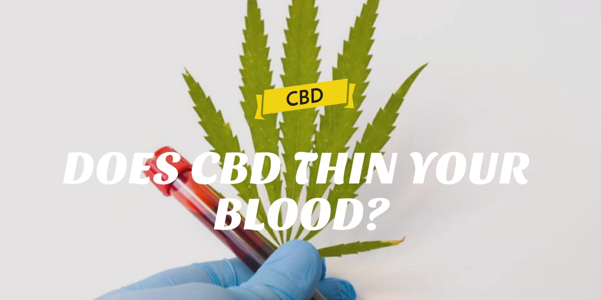 DOES CBD THIN YOUR BLOOD?