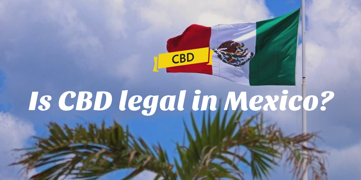 Is CBD legal in Mexico?