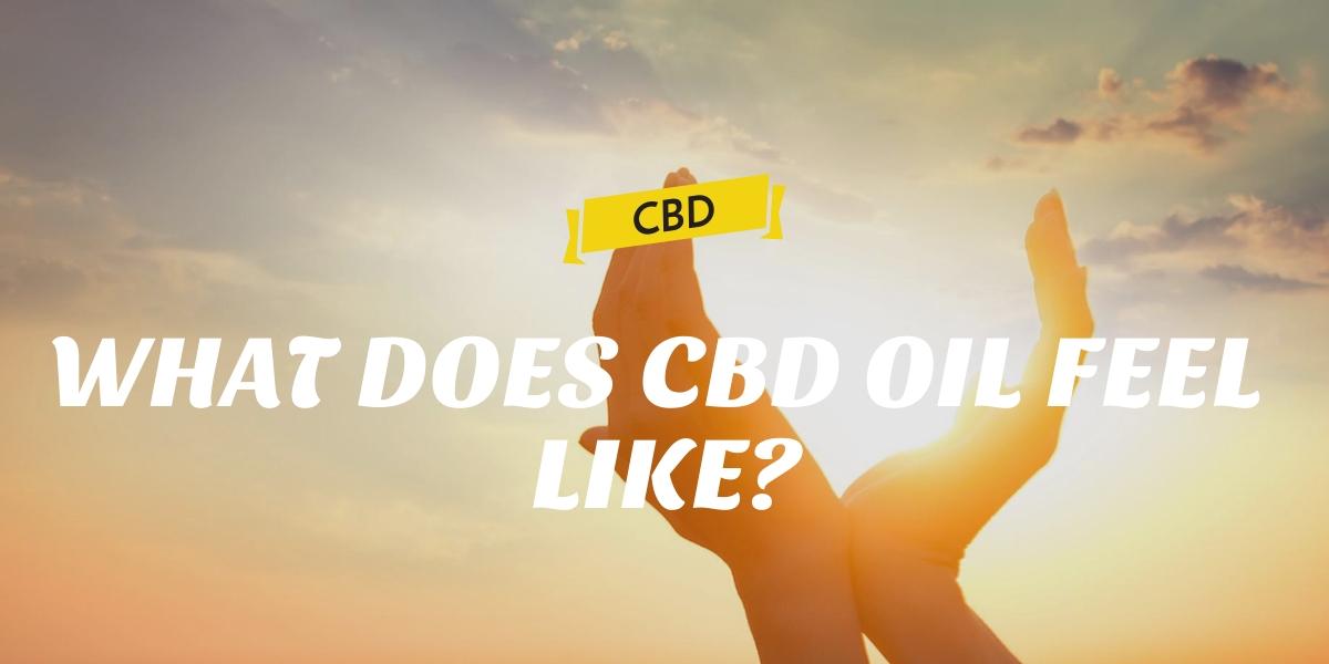 WHAT DOES CBD OIL FEEL LIKE?