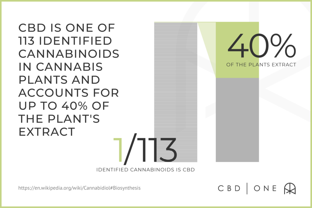 CBD is one of 113 identified cannabinoids in cannabis plants and accounts for up to 40% of the plant's extract